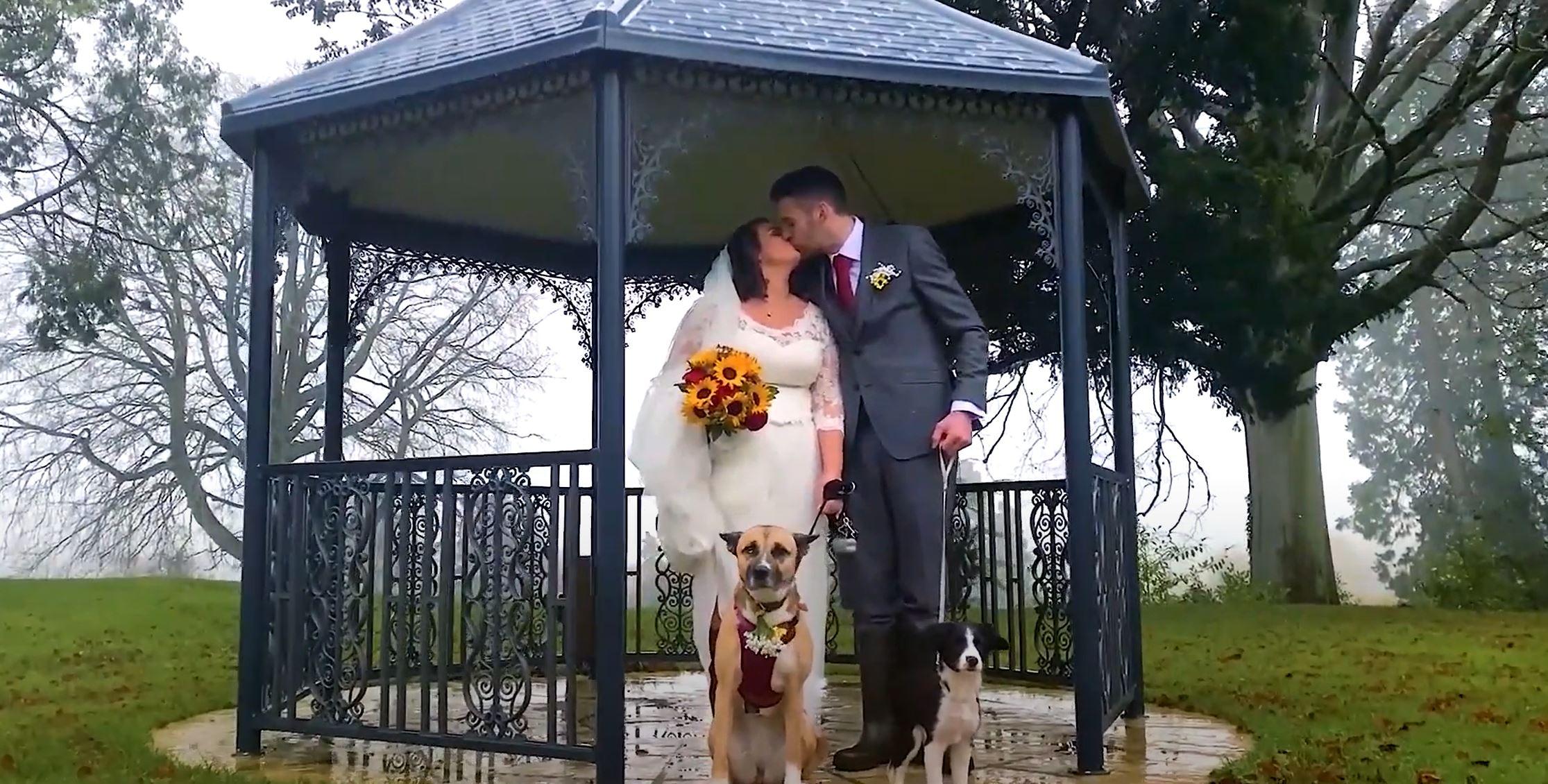 Steve & Kate's Amazing Wedding